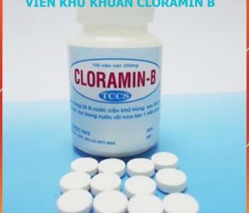 Viên khử khuẩn Cloramin B 100 viên